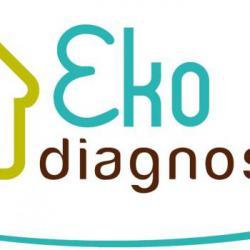 diagnostic immobilier 35400
