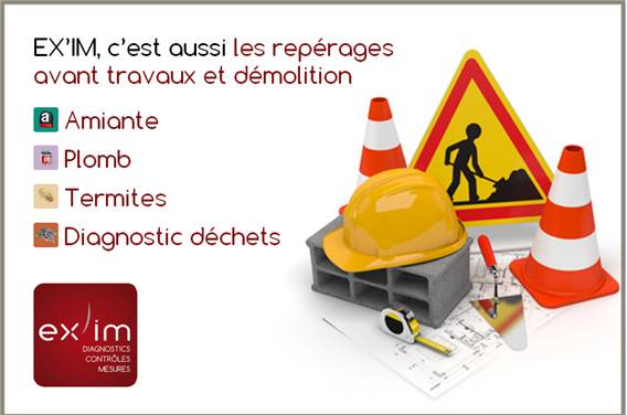 diagnostic immobilier 88100